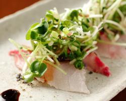 本日のおすすめメニュー「鮮魚のカルパッチョ」@恵比寿の大人の隠れ家 鉄板焼き バンブーグラッシィ(テイクアウト・デリバリーもやってます)